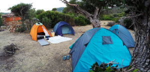 You don't need therapy, you just need to go camping